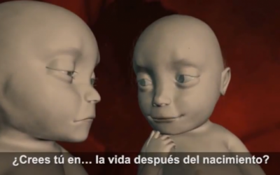 Is There Life After Birth? An Interesting Dialogue Between 1 Unborn Babies