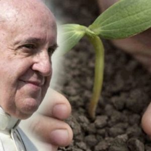 """20 """"Laudato Si"""" Quotes That You Can't Miss! Pope Francis"""