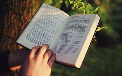 26 Catholic Books You Should Be Reading