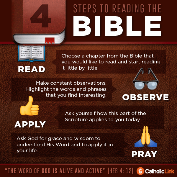 Infographic: 4 Steps to Reading the Bible