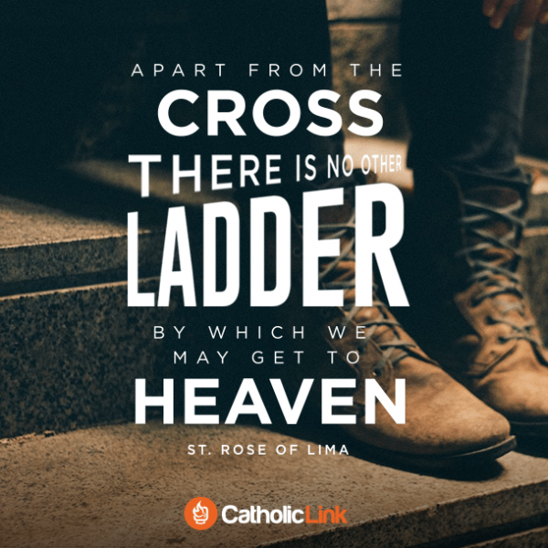 Apart From The Cross There Is No Other Ladder | St. Rose of Lima Quote