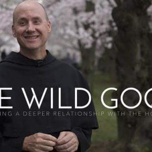 catholic holy spirit wild goose series