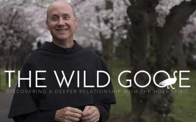 """""""The Wild Goose"""" Is A Must Watch For Catholics Who Want To Grow In The Holy Spirit"""