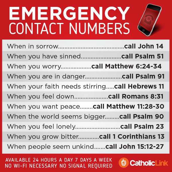 Emergency Contact Numbers In The Bible Infographic