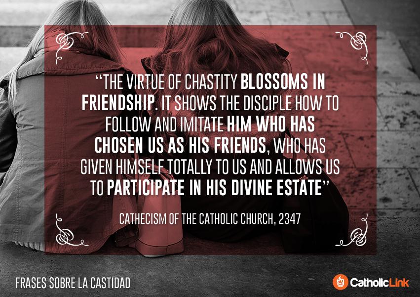 10 Catholic Quotes On Chastity Catechism of the Catholic Church