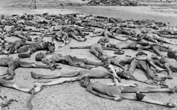 Bodies Camp