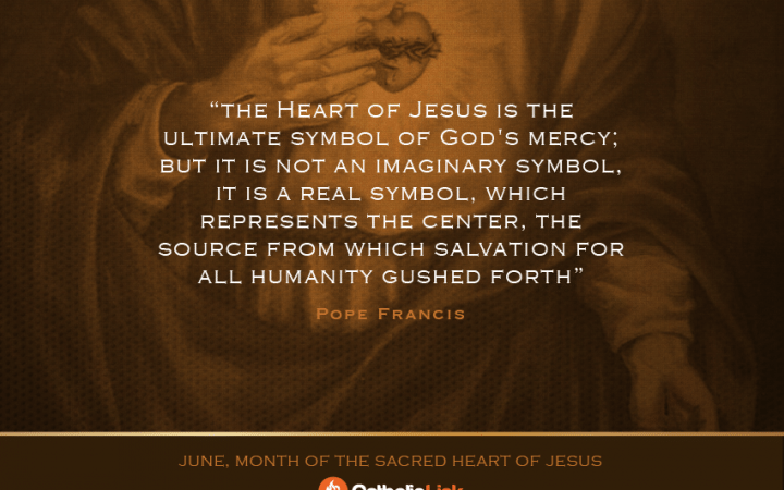 Sacred Heart of Jesus, I trust in You! #CatholicLink #Catholic #Jesus #SacredHeart #JuneDevotion #SaintQuote #Saints #SaintWisdom #SaintAdvice