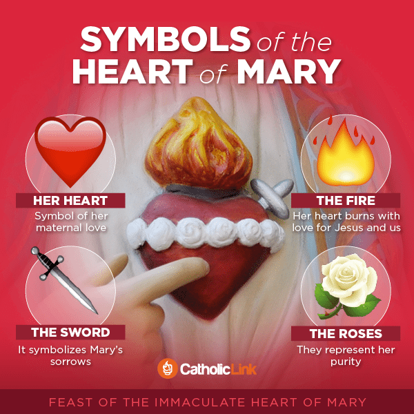 Catholic Infographic: Symbols of the Immaculate Heart of Mary | Catholic-Link.org