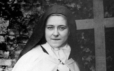 I Didn't Like St. Therese of Lisieux… Until I Learned These 8 Little Known Facts About Her