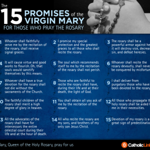 The 15 Promises Of The Rosary According To The Virgin Mary Infographic Visual Guide