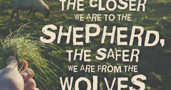 Catholic quote Jesus is the Good Shepherd