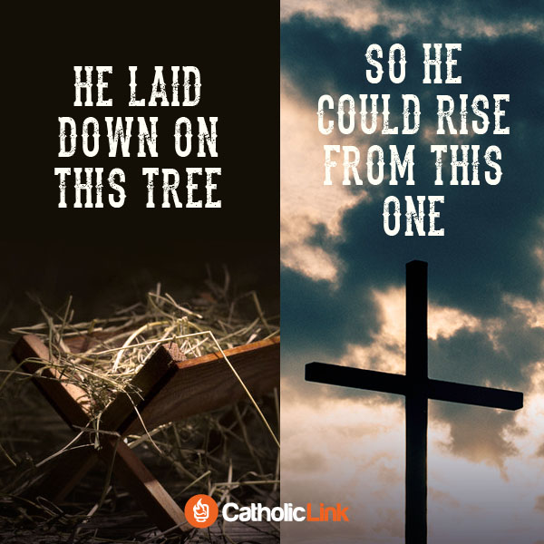 He Laid Down On This Tree, So He Could Rise From This One Catholic Quote