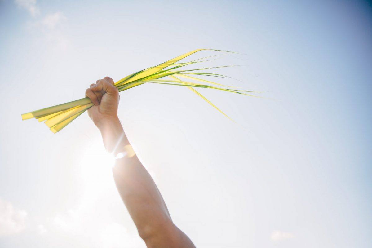 Stretched For The Sake Of Love | Palm Sunday Spiritual Exercises