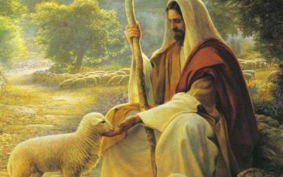How to Encounter the Tender Voice of the Good Shepherd (Gospel Reflection)