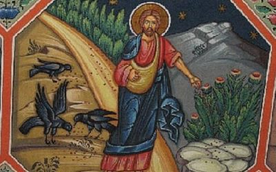 We Are Speakers, Listeners and Words Spoken in the Story of Life (Parable of the Sower Gospel Reflection)