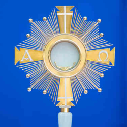 All Your Questions About Adoration Answered...What Is It? How Do I Go? What Do I Do? And More!