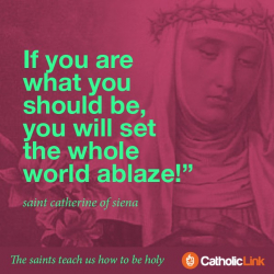 The Saints Teach Us How To Be Holy