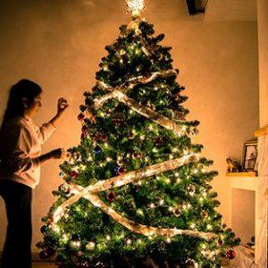 Christmas Tree Blessing Catholic