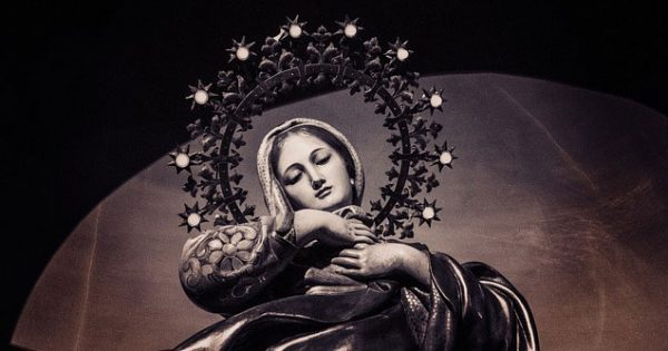 Are You Willing to be Wounded? The Paradox of Mary's Immaculate Love