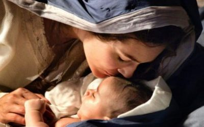3 Things Mary Teaches Us About How to Follow Her Son | Catholic Bible Study