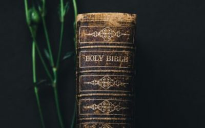 Why Do Catholics Have More Books Of The Bible?