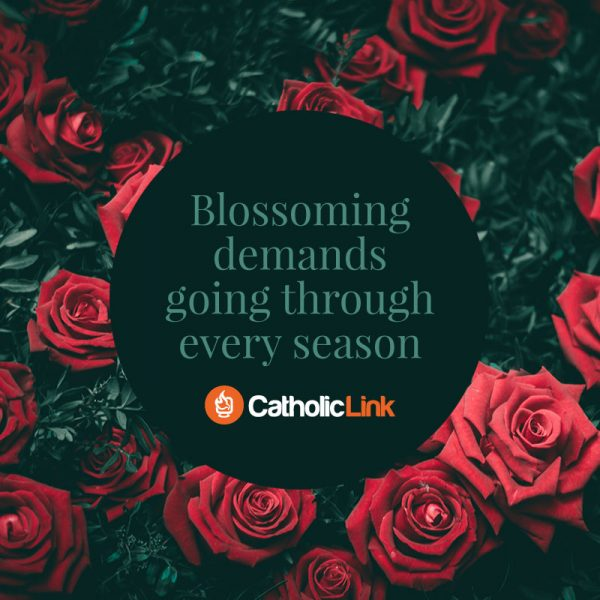 Blossoming Demands Going Through Every Season | Catholic Inspirational Quote