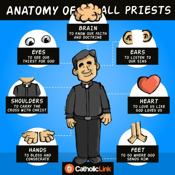 iThe Anatomy Of All Priests nfographic-anatomy-priest