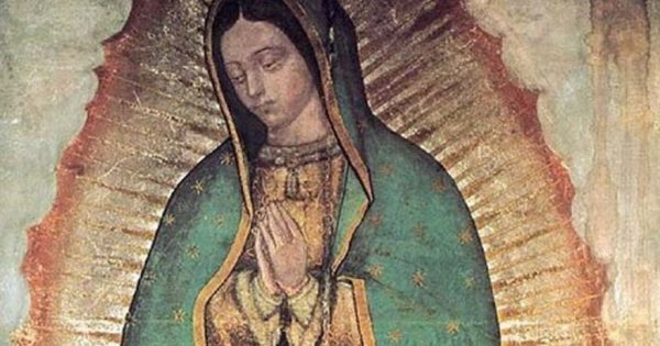 our lady of guadalupe tilma