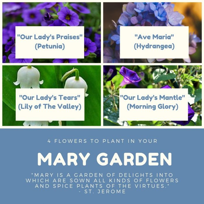 """""""MARY IS A GARDEN OF DELIGHTS INTO WHICH ARE SOWN ALL KINDS OF FLOWERS AND SPICE PLANTS OF THE VIRTUES."""" - ST. JEROME"""