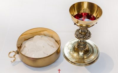 July Is Devoted To The Precious Blood Of Jesus |  Mark Your Calendar!