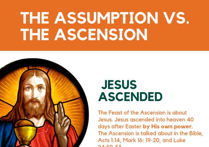 The Ascension Vs. The Assumption