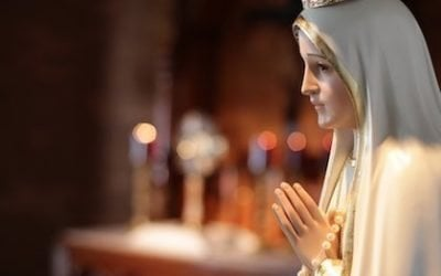 The Solution To Every Problem According To Our Lady Of Fatima