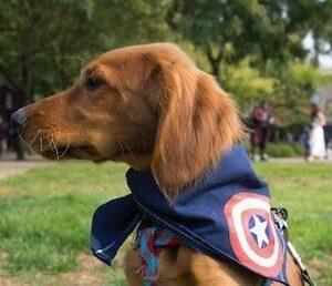Captain America Catholic movie review