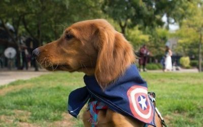 A Few Spiritual Lessons From Captain America