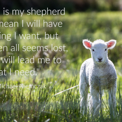 The Lord Is My Shepherd...What Does It Mean?