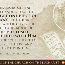 Fuse Yourself With Christ In The Eucharist
