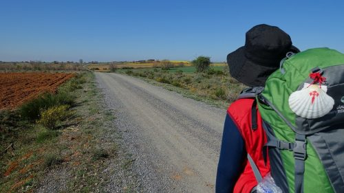 El Camino de Santiago: What Is It And Why Is It Important? Catholic Way of St. James