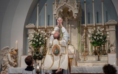 Breaking Open the Pope's New Motu Proprio – Traditionis Custodes