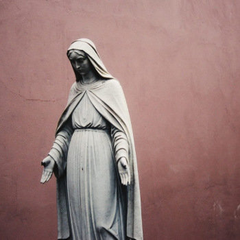 Litany Of The Blessed Virgin Mary, Mother Of Life